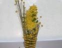 duben 2009 - Zájezd na floru Olomouc