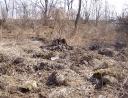 březen 2011 - Černé skládky