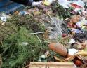 září 2013 - Přednáška o kompostování