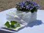 Svatební obřad 4.7.2015