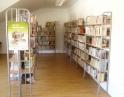 Knihovna Hodonice